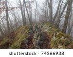 Hiking Trail Along Along A...