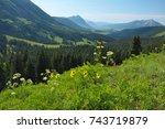 the hills are alive with...   Shutterstock . vector #743719879