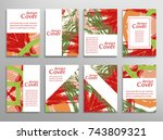 vector abstract background set. ... | Shutterstock .eps vector #743809321