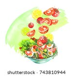 a plate of vegetable salad ... | Shutterstock . vector #743810944
