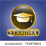 shiny emblem with graduation... | Shutterstock .eps vector #743878831