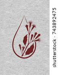 a drop of clove essential oil ...   Shutterstock .eps vector #743892475