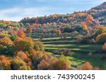 vibrant colored trees at... | Shutterstock . vector #743900245