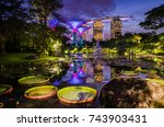 garden by the bay  singapore ... | Shutterstock . vector #743903431