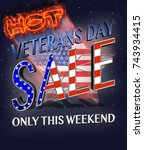 veterans day  hot sale  3d... | Shutterstock . vector #743934415