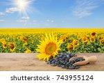 Heap Of Sunflower Seeds In...