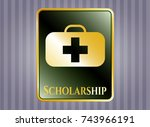 gold badge with medical... | Shutterstock .eps vector #743966191