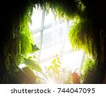 natural tunnel in forest dome... | Shutterstock . vector #744047095