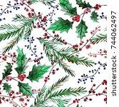 elegant winter seamless pattern ... | Shutterstock . vector #744062497
