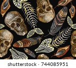 feathers  fish bone and indian... | Shutterstock .eps vector #744085951