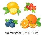fruits | Shutterstock .eps vector #74411149
