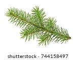 fir branch isolated on white... | Shutterstock . vector #744158497