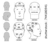 man head divisions scheme... | Shutterstock .eps vector #744180541