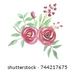 watercolor red pink rose floral ... | Shutterstock . vector #744217675