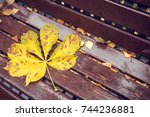Autumn Yellow Leaf Of Chestnut...