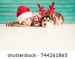 happy child and dog on...   Shutterstock . vector #744261865