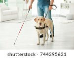 blind man with guide dog at home | Shutterstock . vector #744295621