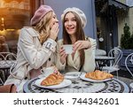 gossips with best friend.... | Shutterstock . vector #744342601