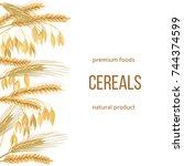 wheat  barley  oat and rye set. ... | Shutterstock .eps vector #744374599