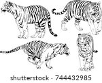 set of vector drawings on the... | Shutterstock .eps vector #744432985