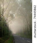 A Long Avenue Of Trees Along...