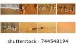 skin natural sand beach...   Shutterstock . vector #744548194