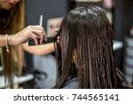 a hairdresser in action cutting ... | Shutterstock . vector #744565141