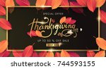 calligraphy of thanksgiving day ... | Shutterstock .eps vector #744593155