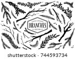 hand drawn branches and twigs.... | Shutterstock .eps vector #744593734