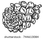 pine cone on white background.... | Shutterstock .eps vector #744613084