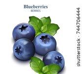 blueberries isolated on white... | Shutterstock .eps vector #744706444