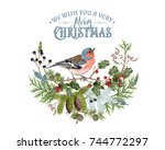 vector vintage composition with ... | Shutterstock .eps vector #744772297