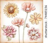 vector hand drawn assorted... | Shutterstock .eps vector #74485156