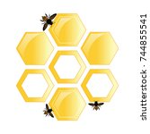 bees on the background of honey ... | Shutterstock .eps vector #744855541
