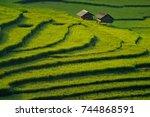 Terrace Rice Field Of Mu Cang...