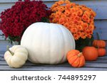 Typical Symbols Of Fall  Autumn ...