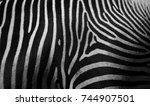 close up detail of the stripes... | Shutterstock . vector #744907501