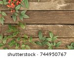 rustic country wood background... | Shutterstock . vector #744950767