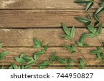 rustic wood background with... | Shutterstock . vector #744950827