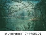 strange lake among the trees  ... | Shutterstock . vector #744965101