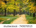 path with autumn trees in park  ... | Shutterstock . vector #745070515