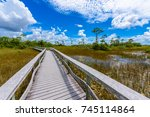mahogany hammock trail of the... | Shutterstock . vector #745114864
