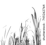 silhouette of reed bush. vector ...   Shutterstock .eps vector #745262764