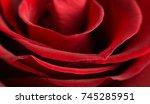 red rose  | Shutterstock . vector #745285951