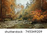 mountain river in the forest.... | Shutterstock . vector #745349209