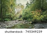 mountain river in the forest.... | Shutterstock . vector #745349239