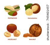 nut set. ripe nuts and seeds... | Shutterstock .eps vector #745401457