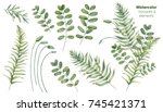 botanical illustrations. floral ... | Shutterstock . vector #745421371