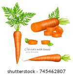 carrots with leaves and carrot... | Shutterstock .eps vector #745462807
