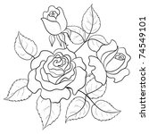 Flowers Roses  Vector  Buds An...